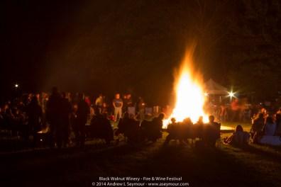 Fire & Wine Festival 322