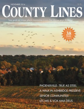 Nov 2014 Cover - County Lines Magazine
