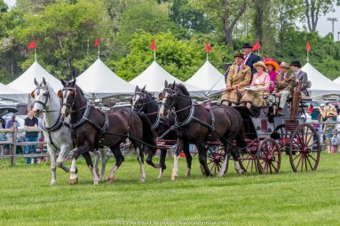 Carriages of Radnor Hunt 055