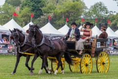 Carriages of Radnor Hunt 075