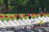 Steeplechase at Radnor Hunt 206