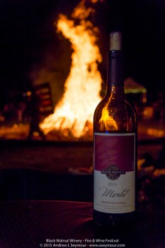 Some Merlot enjoying the fire during the 3rd Annual Fire and Wine Festival at Black Walnut Winery. For Prints or more info contact www.aseymour.com.
