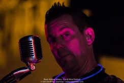 Chris Holt singing at the 3rd annual Fire & Wine Festival at Black Walnut Winery in Sadsburyville, Chester County PA.