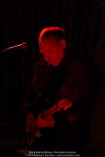 John Holt singing at the 3rd annual Fire & Wine Festival at Black Walnut Winery in Sadsburyville, Chester County PA.