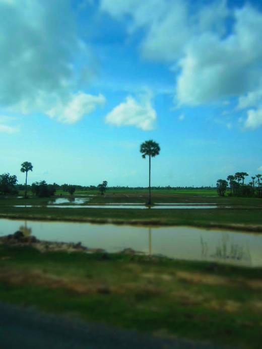 cambodia_scenery
