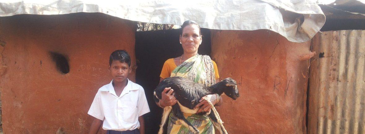 Ziegenprojekt der Ishvari-Selbsthilfegruppe (Foto: Ashakiran)