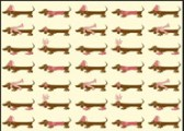 Gift-Wrap---Dachshund-Paper