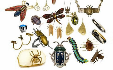 Fashionable bug jewelry