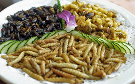 Entomophagy – the consumption of insects