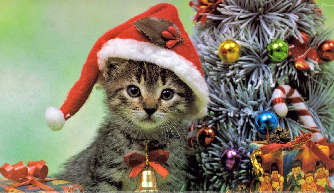 ASE Christmas Related Articles