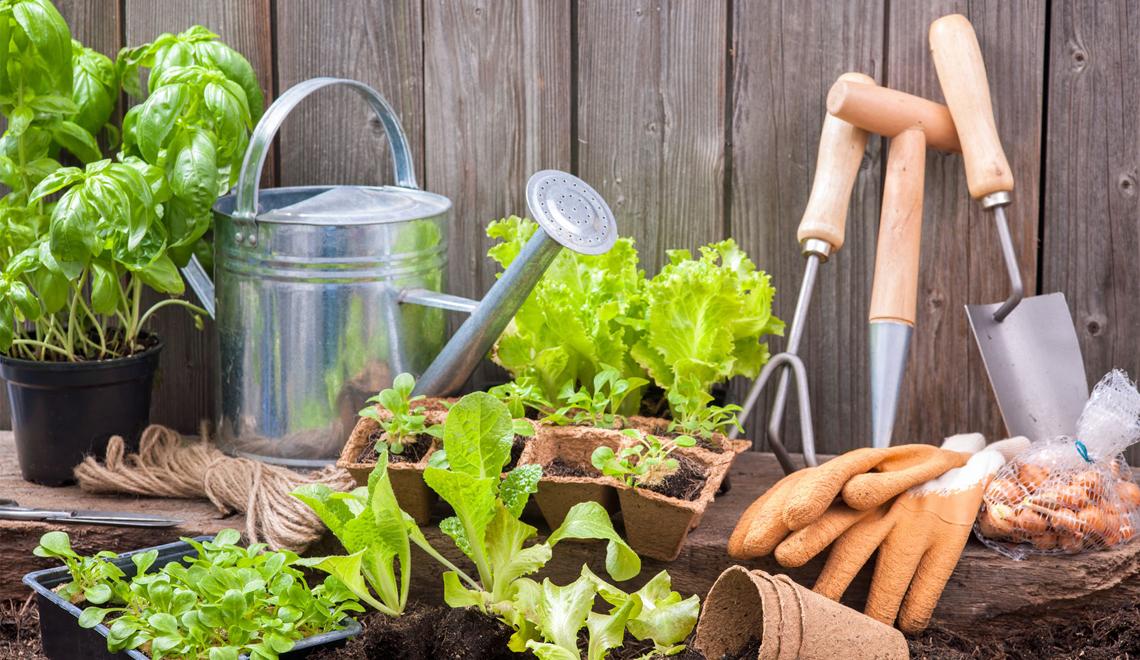 High Tech Gardening Equipment