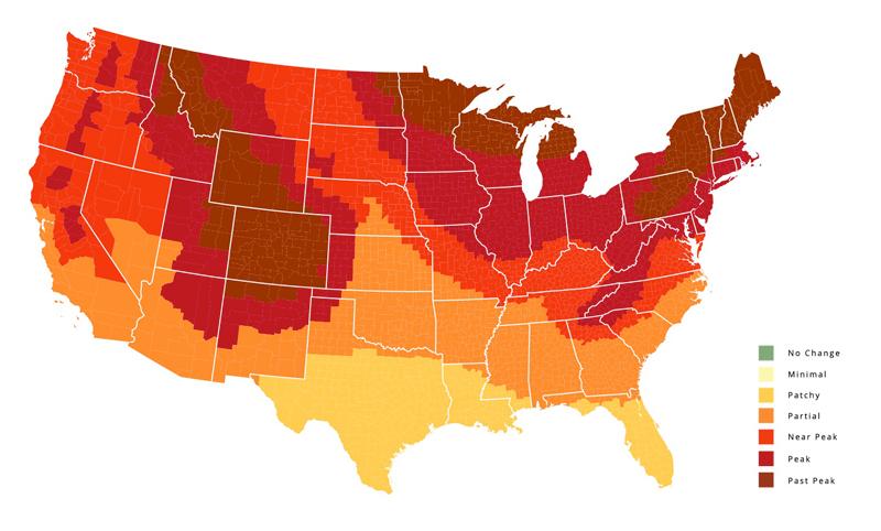 fall-foliage-2016-foliage-map