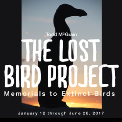 Memorials to Extinct Birds