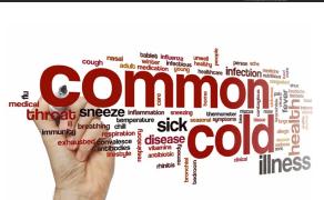 common cold prevention