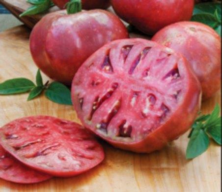 cherokee purple cultivar tomatoes