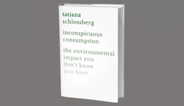 inconspicuous Consumption on Climate Change
