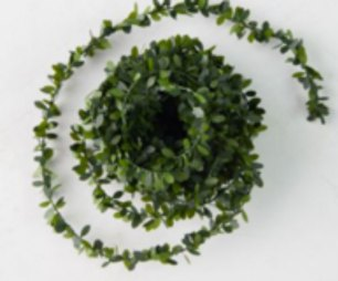 boxwood ribbon for creatively wrapping gifts