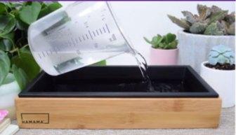 Hamama seed tray