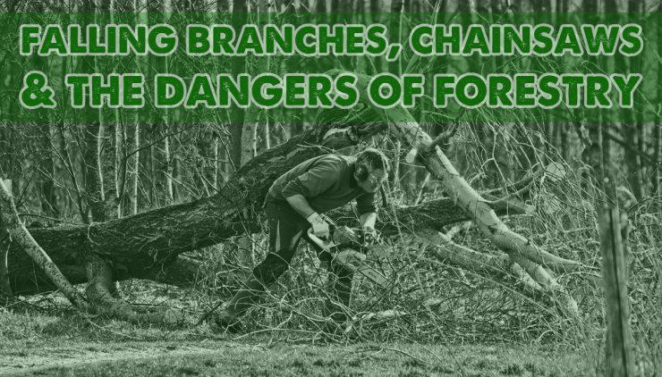 Forestry Dangers