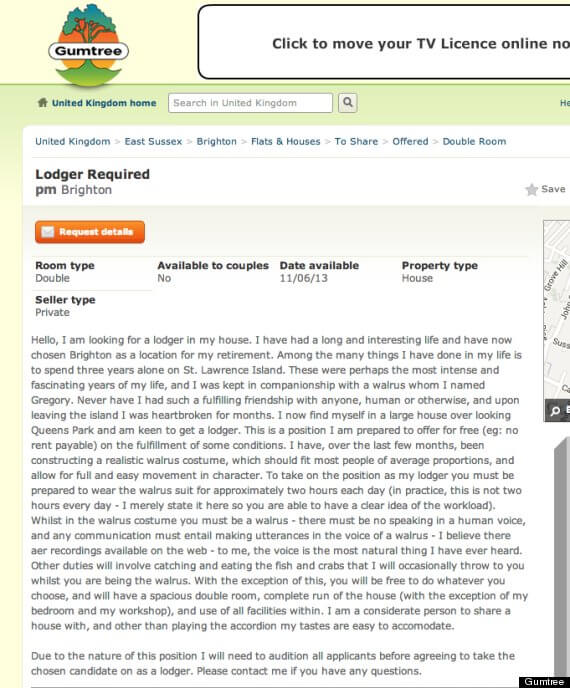 Walrus Lodger wanted on Gumtree