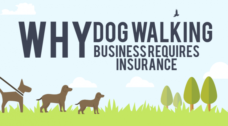 Why Dog Walking Business Requires Insurance