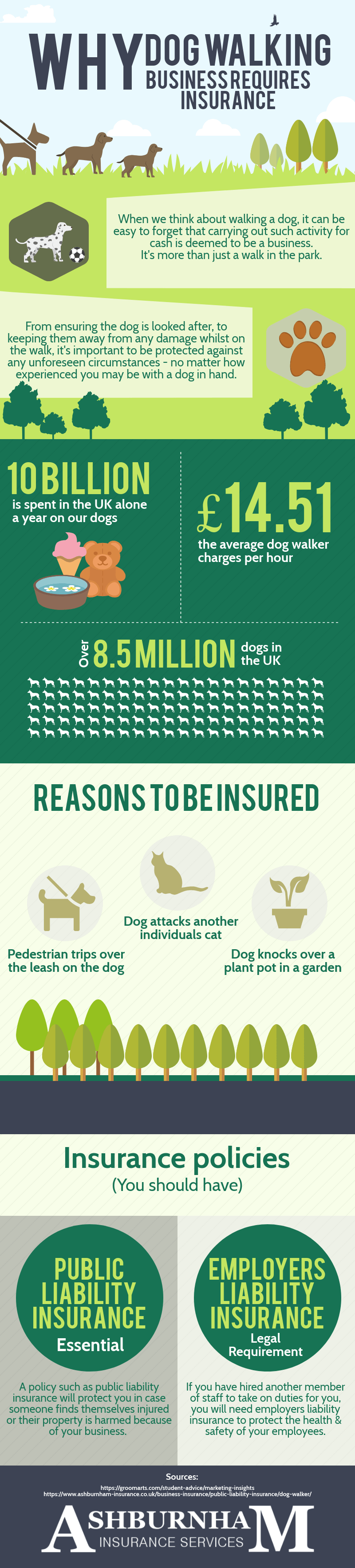 Why Dog Walking Business Requires Insurance Infographic