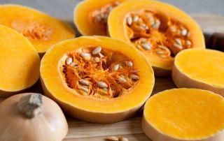 autumn squash pumpkin