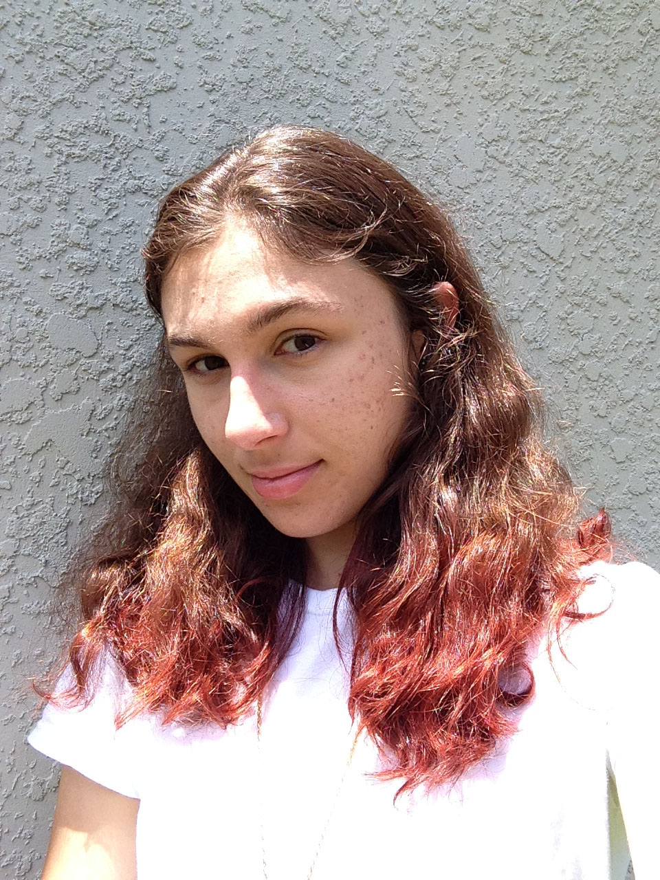 How To Dip Dye Your Hair Archives Ashlee Crafts World