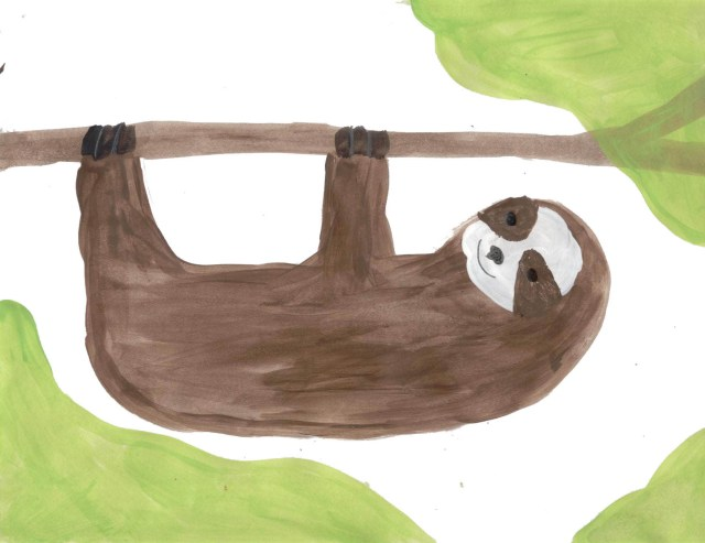 Sloths (Wonderful Wildlife, Book 3) by Ashlee Craft - Three-Toed Sloth