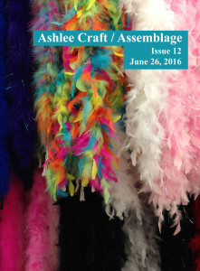 Issue 12 - Ashlee Craft / Assemblage - Zines
