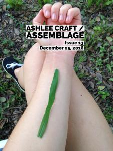 Ashlee Craft / Assemblage Issue 13 Cover