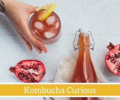 Kombucha Curious Cooking Workshop