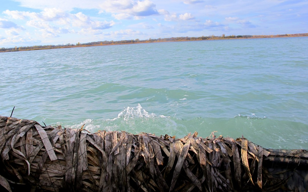 Trying (and Failing) at Michigan Duck Hunting