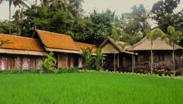 Chasing Eat Pray Love In Bali
