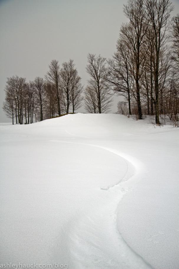 Snowboard tracks