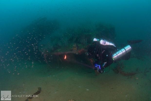 USS_Hogan_Wreck_14