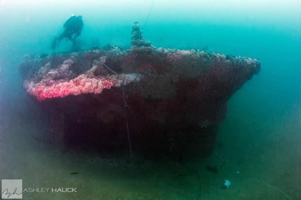 USS_Hogan_Wreck_27