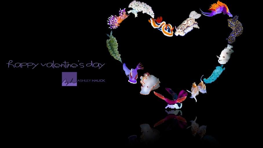 Nudibranch Valentine