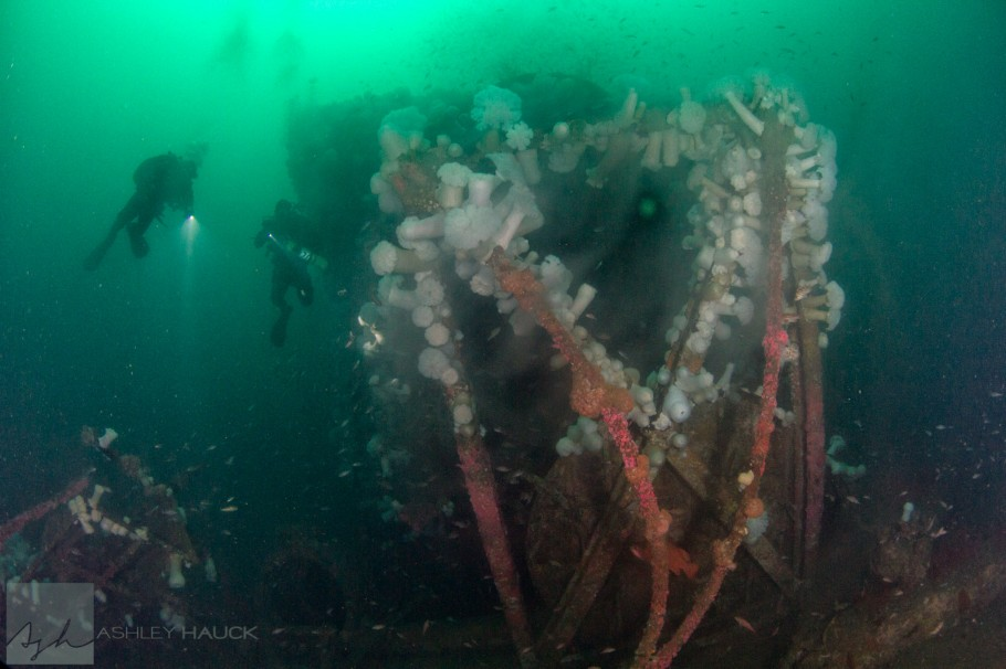 Missile Tower artificial reef/wreck, San Diego