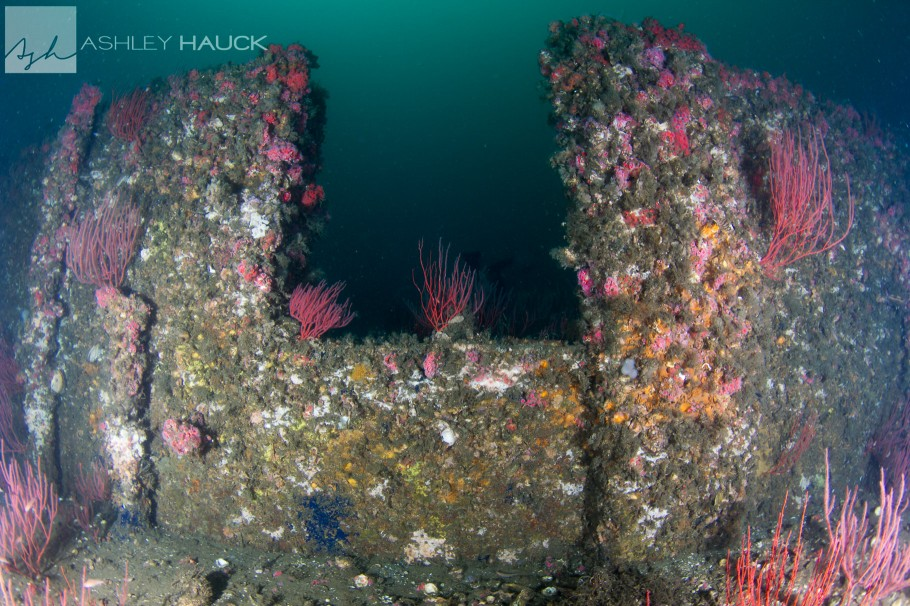 USS Palawan wreck