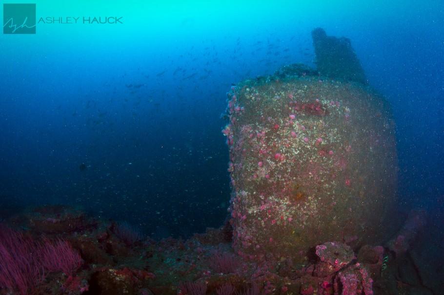 UB-88 Submarine Wreck