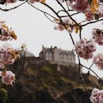 Spring is my favourite time of year in Edinburgh Thehellip