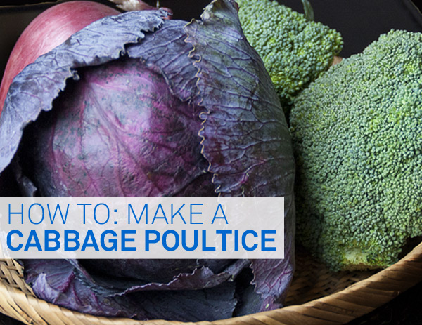 cabbage-poultice