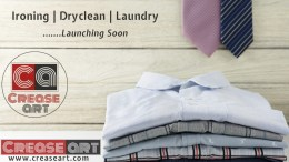 Crease Art - Online Laundry Startup