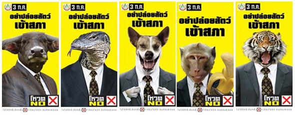 animali in politica