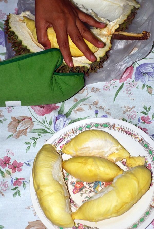 durian frutto asia thailandia puzzolente
