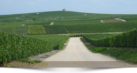The home of a great Champagne - Champagne Hostomme -