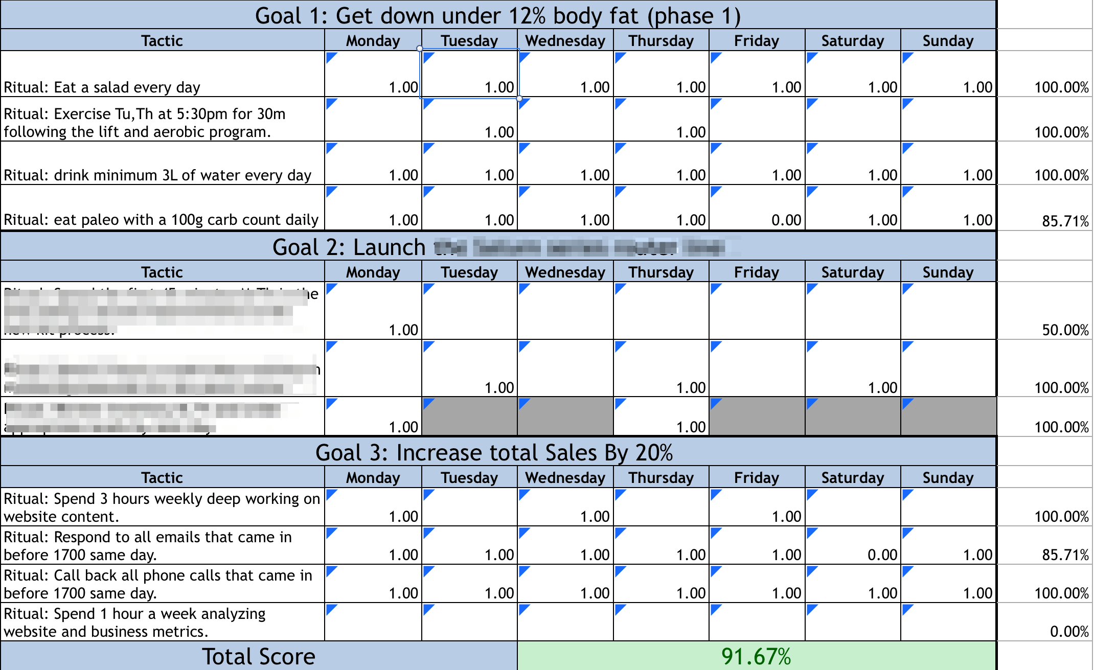 Case Study On The 12 Week Year