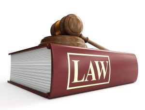 How does a law come into force in India?