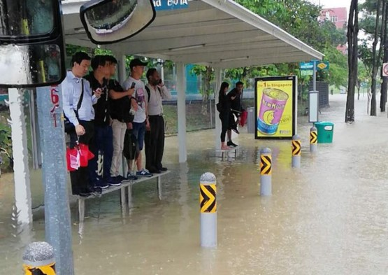 Singaporeans standing at bus stop